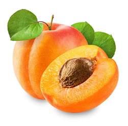 l abricot