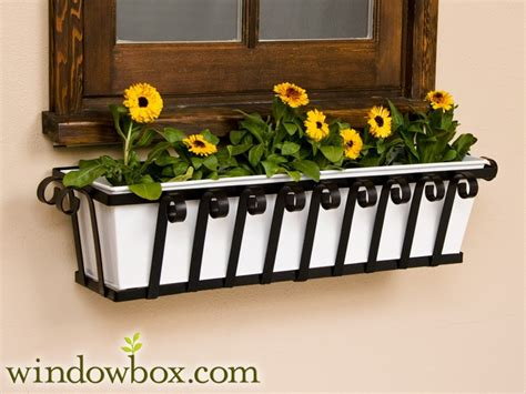 venetian wrought iron window boxes windowboxcom