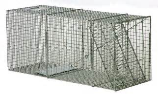 coyote trap coyote traps coyote cage coyote cages