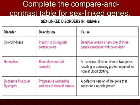 section 14 2 human chromosomes ppt human chromosomes section 14 2 powerpoint
