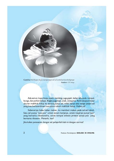 Buku Biologi 3b Untuk Kelas 3 Sma Erlangga archives flexierogon