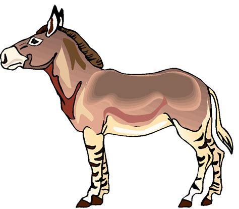 imagenes muy extrañas graciosas 74 ideas dibujos de cara de burros on