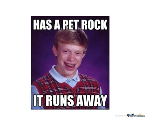 Pet Rock Meme - pet rock by fakeblaze meme center