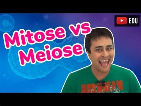 anna mitose e meiose mitose videolike