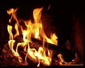 fireplace gifs find on giphy