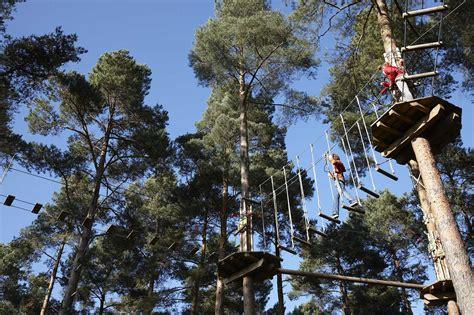 theme line zip go ape treetop adventure course opens first u s location
