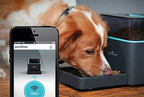 gadgets for pets top best 11 gadgets for home controlled by smartphone