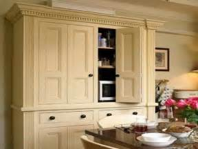 Freestanding Pantry Cabinet For Kitchen Free Standing Pantry For The Home