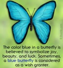 What S The Meaning Of A Blue Butterfly And What Does It Butterfly Meanings