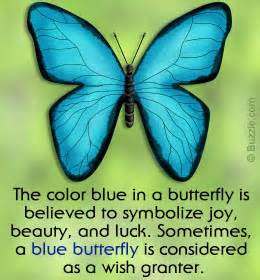 what does wic stand for on a floor plan 28 butterfly meanings of the color when an insect
