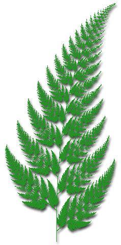 Kaos Plants And 16 tiversonus