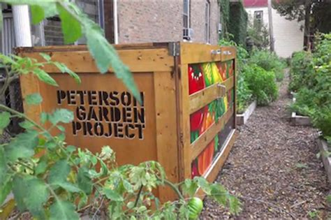 Peterson Garden Project photo gallery chiditarod shopping cart race chicago s