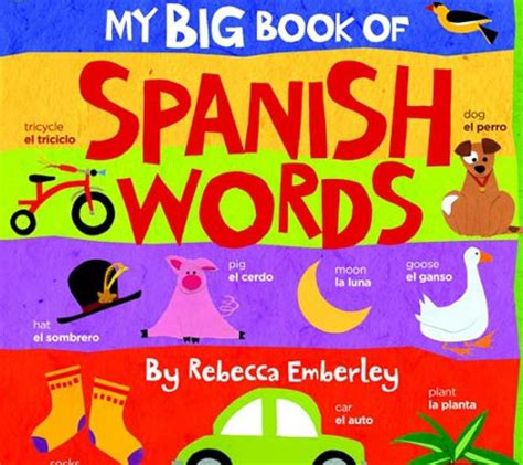 my bilingual bookã ã and edition books bilingual board books for baby and