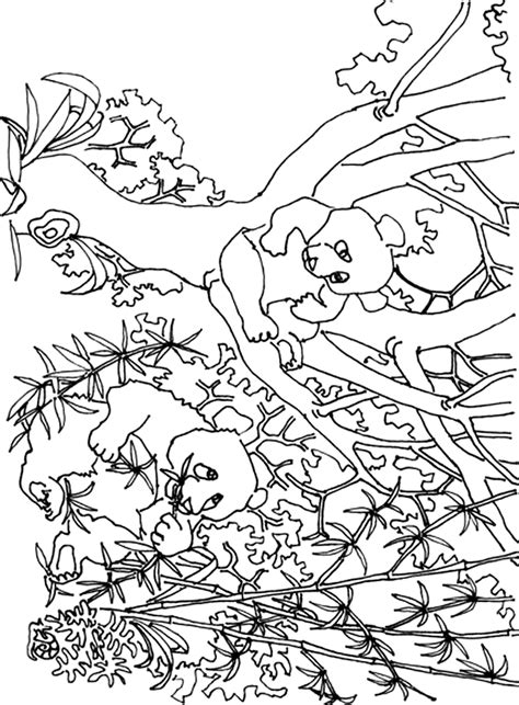 giant coloring pages for adults 87 giant coloring pages for adults enchanted forest