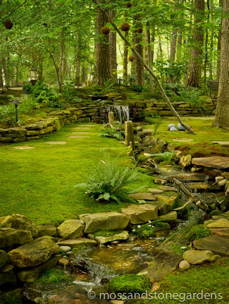 Moss And Gardens by Moss And Gardens Where Moss Rocks Moss And