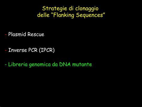 libreria genomica ppt genetica forward e powerpoint presentation