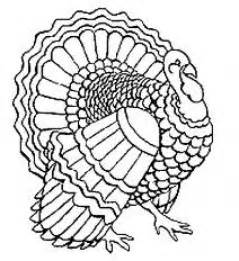 turkey in disguise coloring page page turkey coloring page turkey coloring page turkey