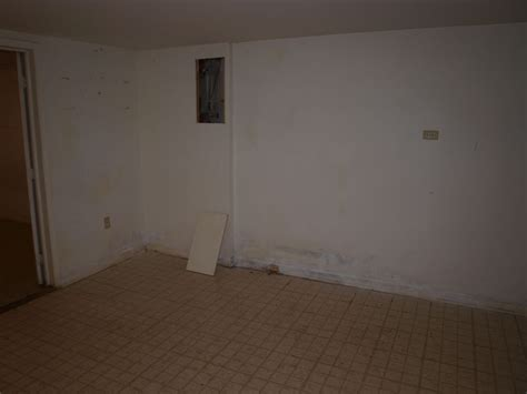green mold in basement more green for less green mold abatement in the basement