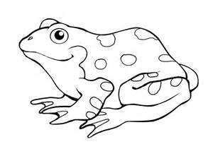 Frog Template Animal Templates Free Premium Templates Coloring Page Of A Frog