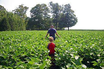 Family Farming Essay by Photo Essay The Canadian Family Farm Worldpress Org
