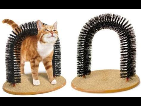 Mainan Laser Untuk Kucing cobalah 4 mainan lucu ini untuk kucing kesayangan anda