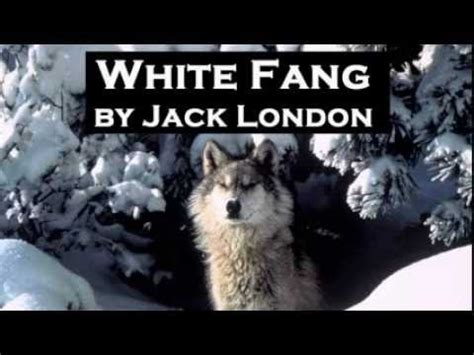 book report on white fang white fang by audio book adventure