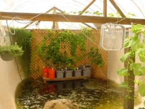 garden pool aquaponics fish farmer