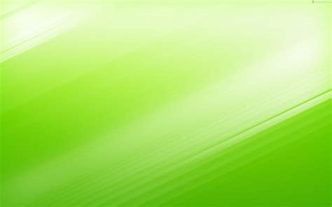 green wallpapers  green backgrounds