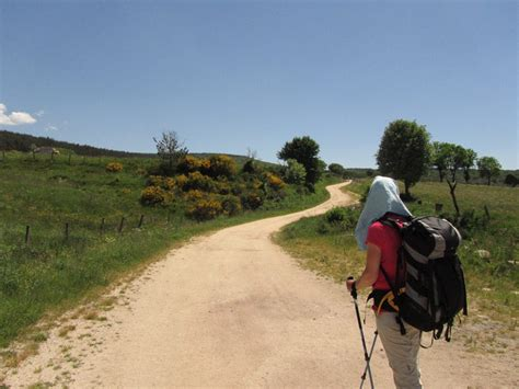 camino st how much did you spend on the camino de santiago