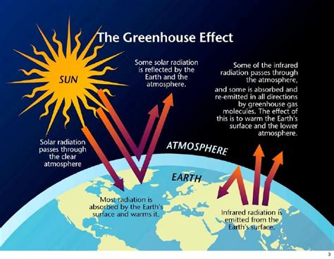 Greenhouse Effect Essay Pdf by Essay On Global Warming