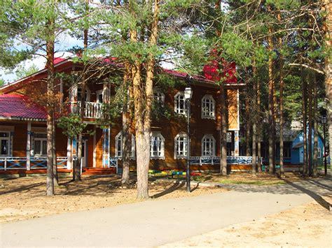 casas en rboles casas de madera en los arboles casa parece flotar entre