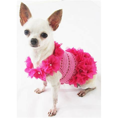 xxs puppy clothes xxs clothes search engine at search