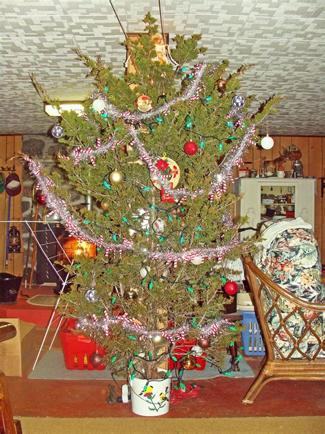 decorating a christmas tree to look old fashioned fashioned tree cedar