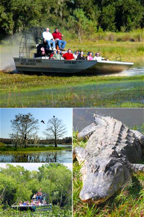 airboat in orlando airboat rides in orlando american attractions
