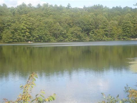 swinging bridge reservoir sullivan county lake front real estate