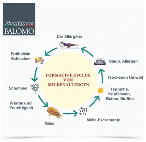 matratzen mit silberfäden milben der milben lebenszyklus 4 einfache tipps um die milben