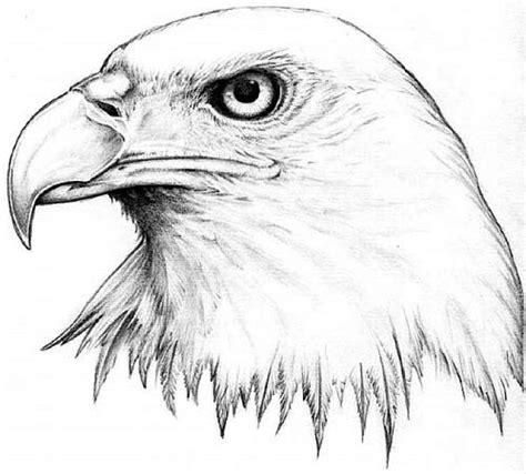 tattoo eagle sketch 10 incredible eagle tattoo designs and ideas