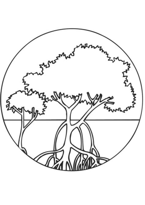 mangrove tree coloring page coloring page mangroves img 9469 quilt ideas pinterest