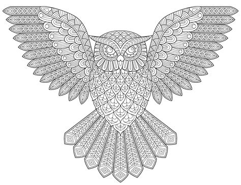 owl wings coloring page owl with wings out coloring pages for adults owl best