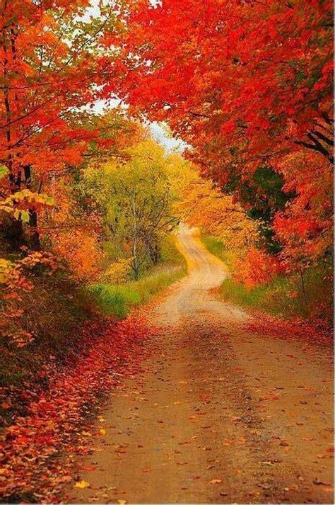 beautiful fall colors autumn pinterest