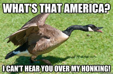 Goose Meme - golden goose memes