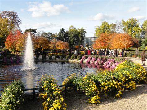 au jardin des plantes de rouen 15 000 chrysanth 232 mes