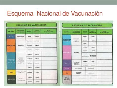 manual de vacunacion 2016 manual de vacunacion 2016 inmunizaciones en pediatr 237 a