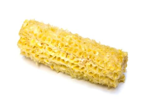 corn on the cob for dogs can dogs eat corn on the cob cuteness