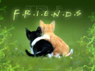 lettere d amicizia vera lettera d amicizia lettera amicizia