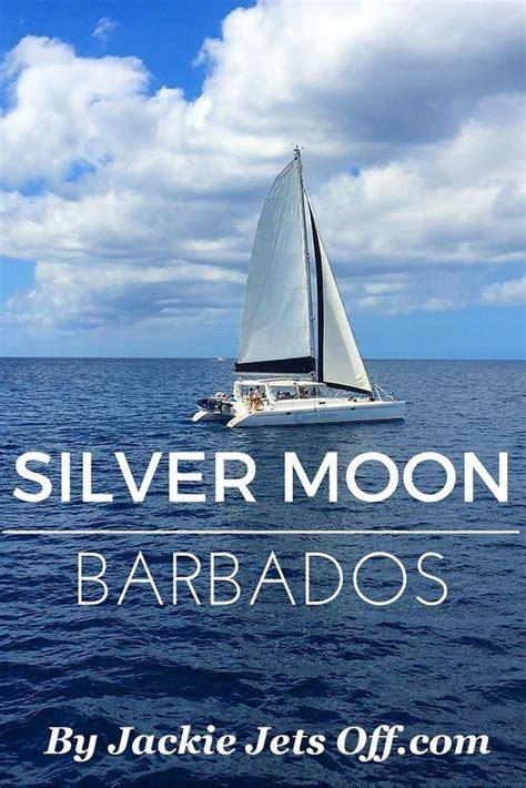 catamaran trips barbados reviews 24 best cruising barbados caribbean cruise images on