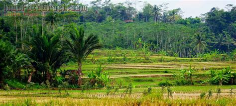 wallpaper foto alam wallpaper panorama alam indonesia collection 9 wallpapers