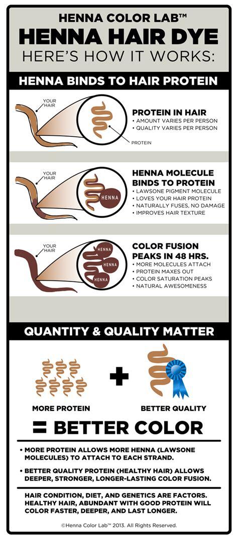 pure henna hair dye henna color lab henna hair dye infographics henna color lab henna hair dye