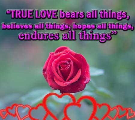 imagenes en ingles con frases lindas imagenes de rosas con frases de amor en ingles rosas de amor