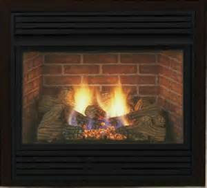 fireplace inserts gas ventless